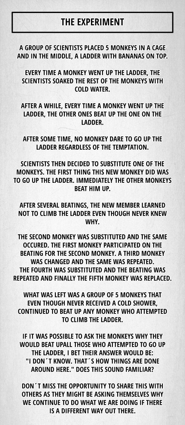 monkeyseemonkeydo